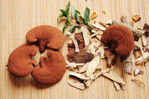 Cách dùng nấm lim