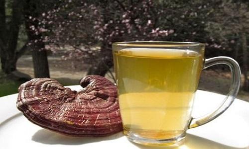cách uống nước nấm lim xanh chính xác