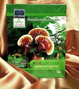Sản phẩm Nấm lim xanh Thanh thiết bảo sinh: Từ bí quyết gia truyền