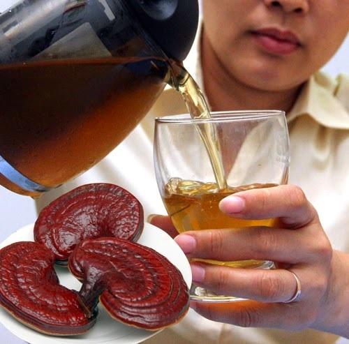 Cách uống nấm lim xanh mang lại hiệu quả tốt nhất