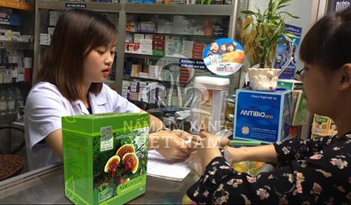 Đại lý bán nấm lim xanh tại Yên Bái cung cấp sản phẩm chính hãng