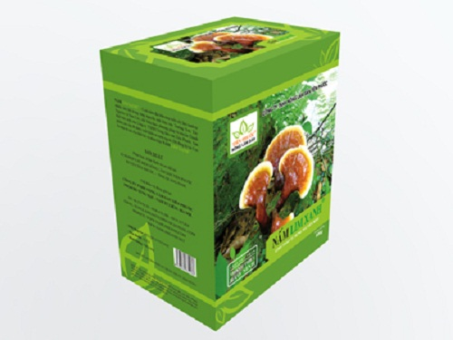 Sản phẩm nấm lim xanh Tiên Phước từ rừng tự nhiên Quảng Nam