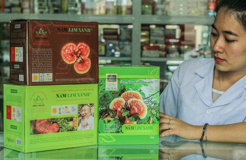 Dược sĩ tư vấn cho người dùng cách dùng sản phẩm nấm lim xanh Tiên Phước
